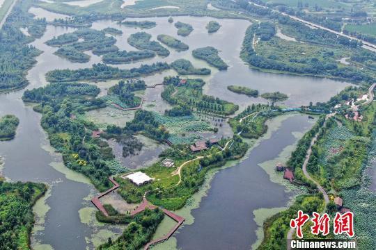 江苏赤山湖国家湿地公园夏日旖旎