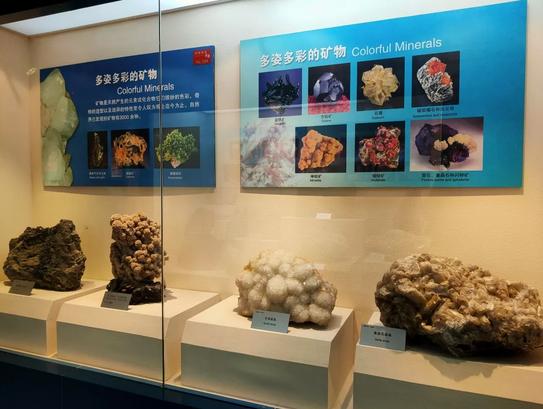 標本 館 地質 地質標本館